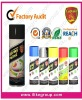 Coating Spray Paint (Rosh,REACH ,SGS...)