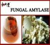 Fungal amylase