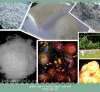 Granulated Porous Ammonium Nitrate(PPAN)