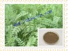 Herb epimedium extract Icariine powder