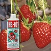 Natural plant energies liquid gardening bio plant and garden HB-101 500cc