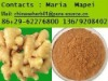 rhizoma zingiberis recens extract powder