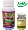 soluble boron fertilizer